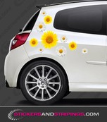 Car sunflower and daisy set (3556)